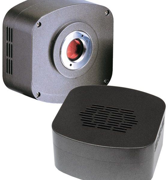 DC.50001-it