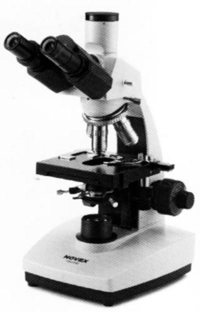 immagine MICROSCOPIO BIOLOGICO TRINOCULARE